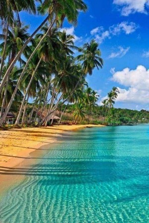 Hawaii For the Adventurous - It's not just beaches ... |Jamaican Black Sand Beaches
