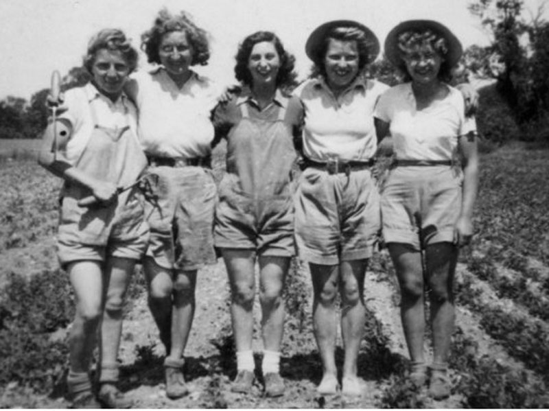 A group of girls wearing shorts and t-shirts on a farm