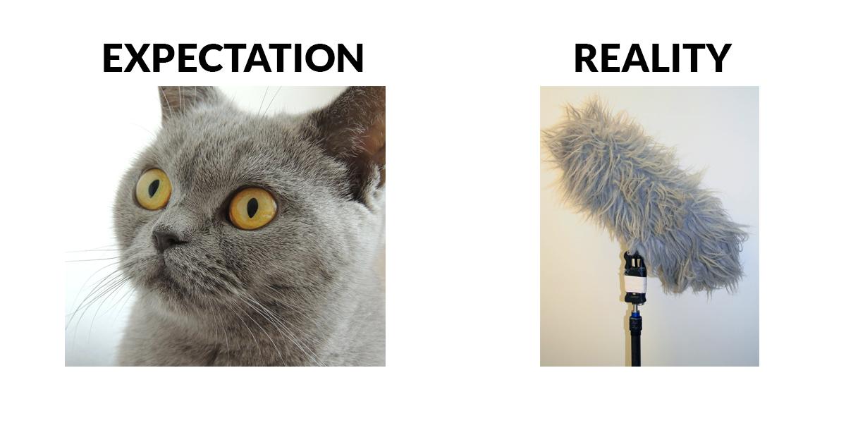 deadcat