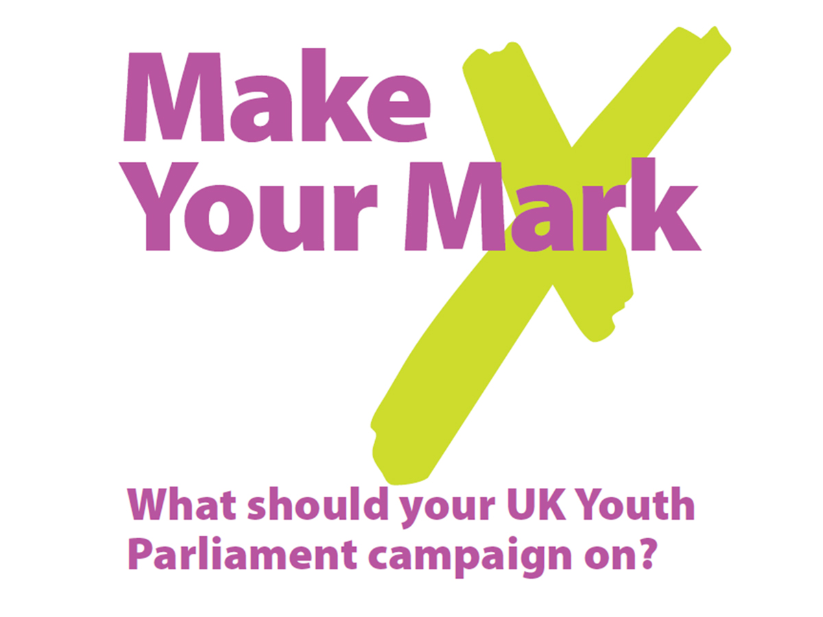 make_your_mark_youth_parliament