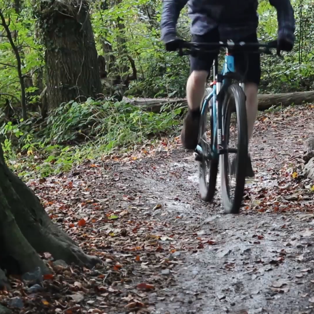 Friday: learn to mountain bike in Ashton Court