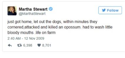 3 stewart