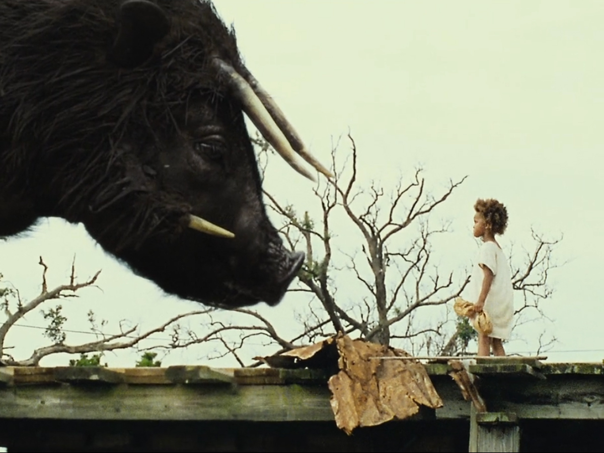 Beasts Of The Southern Wild, cinereach productions