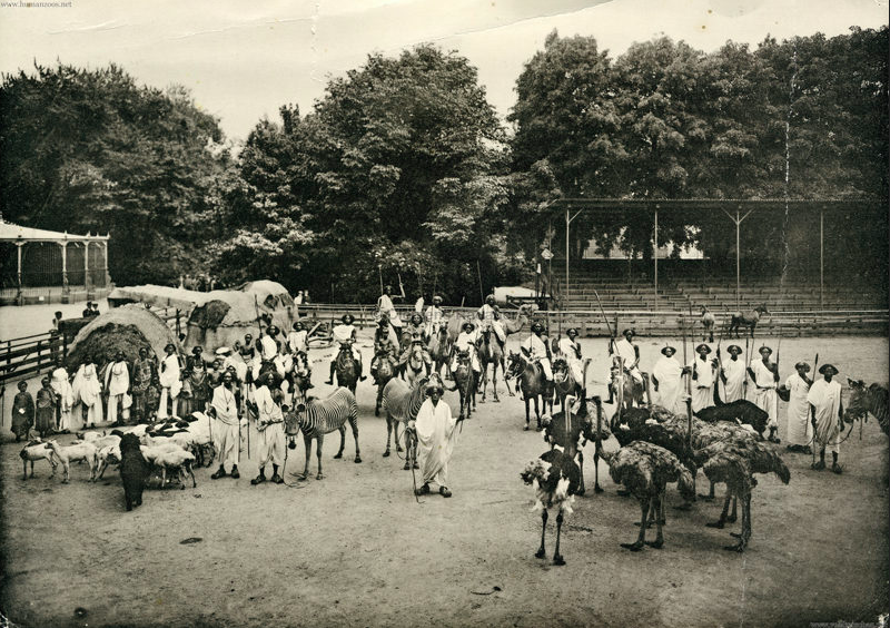 Black People On Display The Forgotten History Of Human Zoos